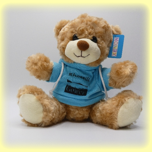 Bear Rhossili Gift Shop