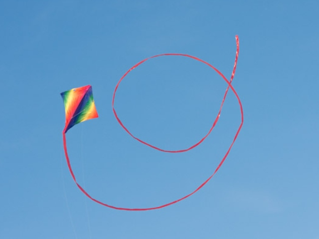 Wide Range of stunt kites Gower kite shop