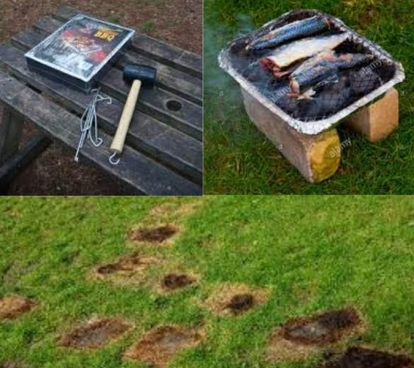 Please keep B.B.Q's of the ground and not directly on to picnic benches we can provide bricks