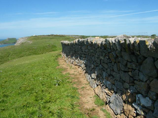 Dry stone wall Gower Style
