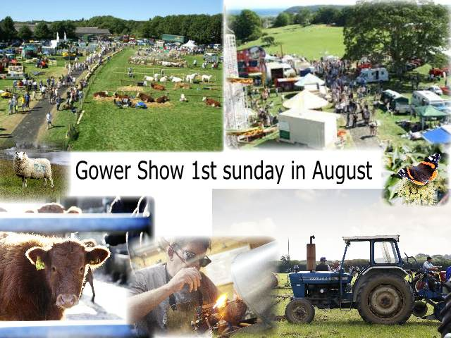 Gower Show 1st Sunday in August