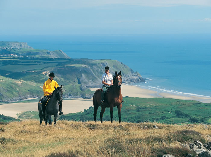 Horse Riding on the Gower