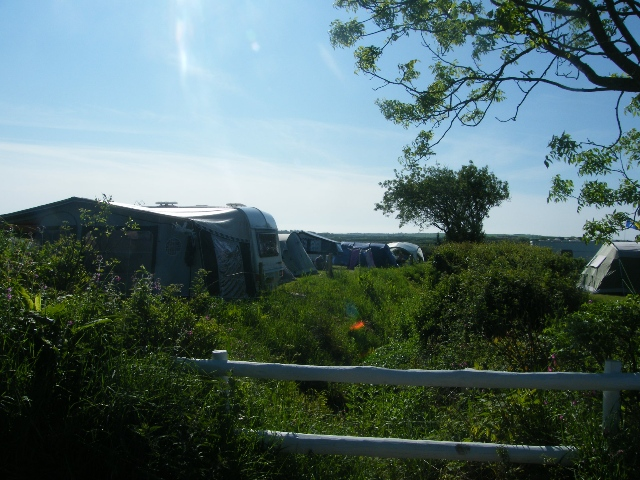 Lots of green space at Pitton Cross Caravan Park