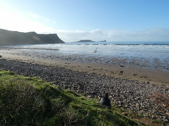 Gower Rhossili Walking Dog Friendly