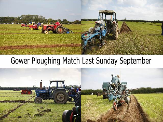 Gower Ploughing Match Last Sunday September