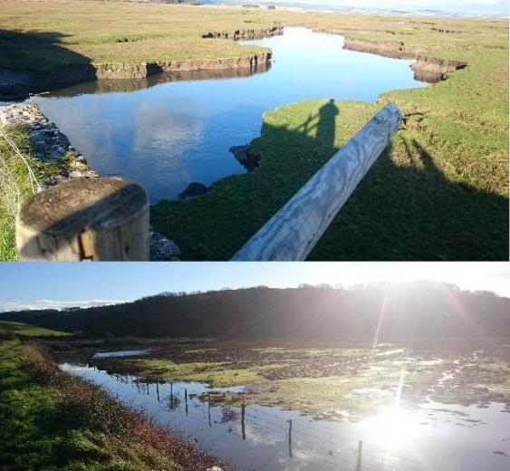 Gower high tides  slat marsh Gower has the second highest tides in the World when out the river is a small stream and At spring tide bottom picture is full of water