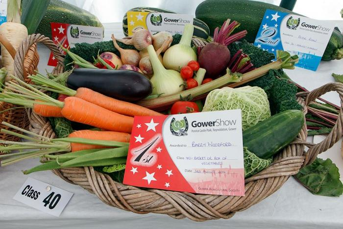 Gower show held every year in August